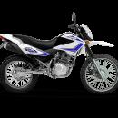 skua-150-2016-blanco-1